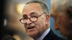 Schumer, key Democratic player in 'Gang of 8'